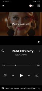 - Screenshot 20190313 173809 com - YouTube Music App Released in India: Download Your Favorite Music for Free