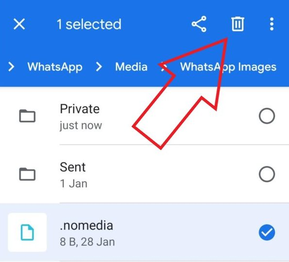 How to Fix WhatsApp Images Not Showing in Gallery