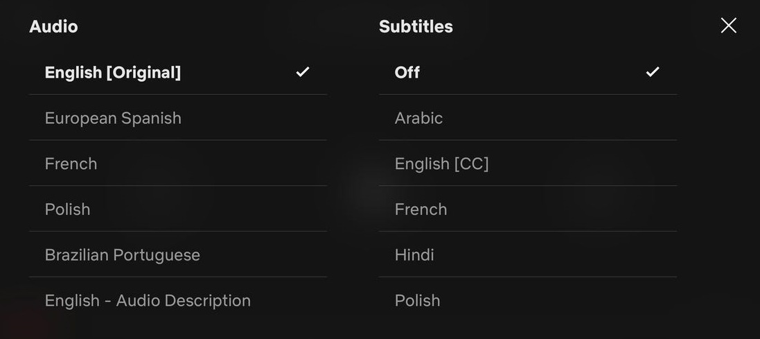 Get the Most Out Of Your Netflix Subtitles
