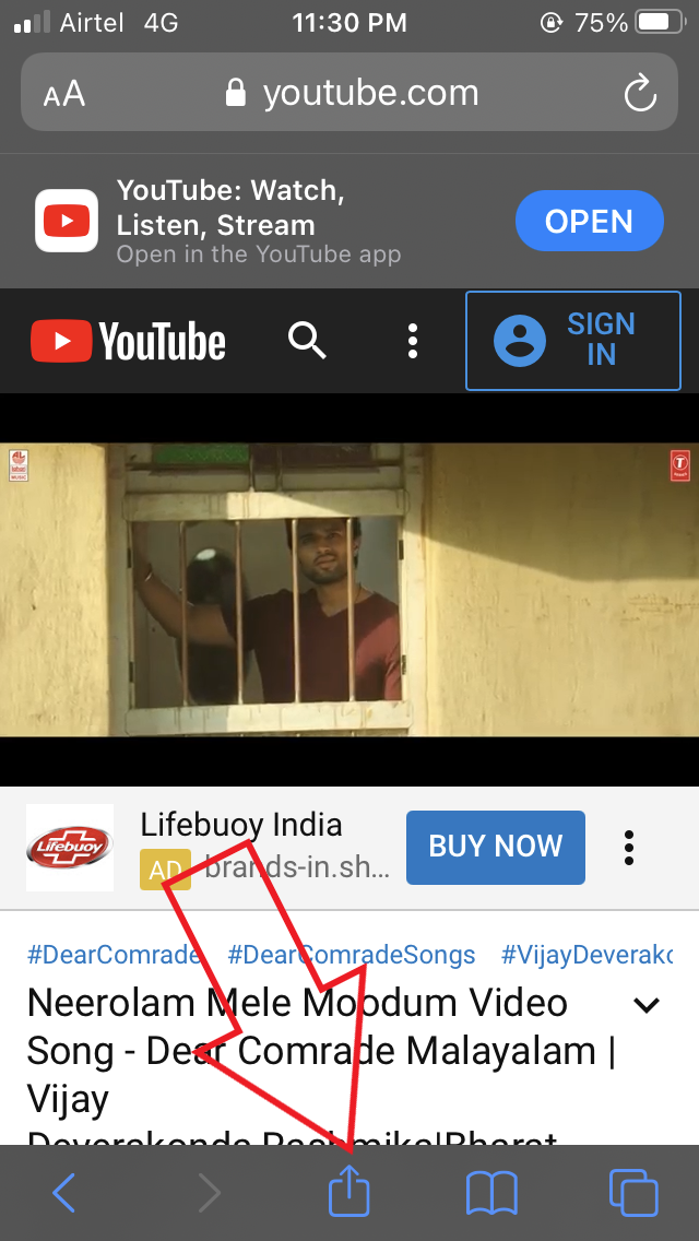 Use Picture in Picture YouTube iOS 14