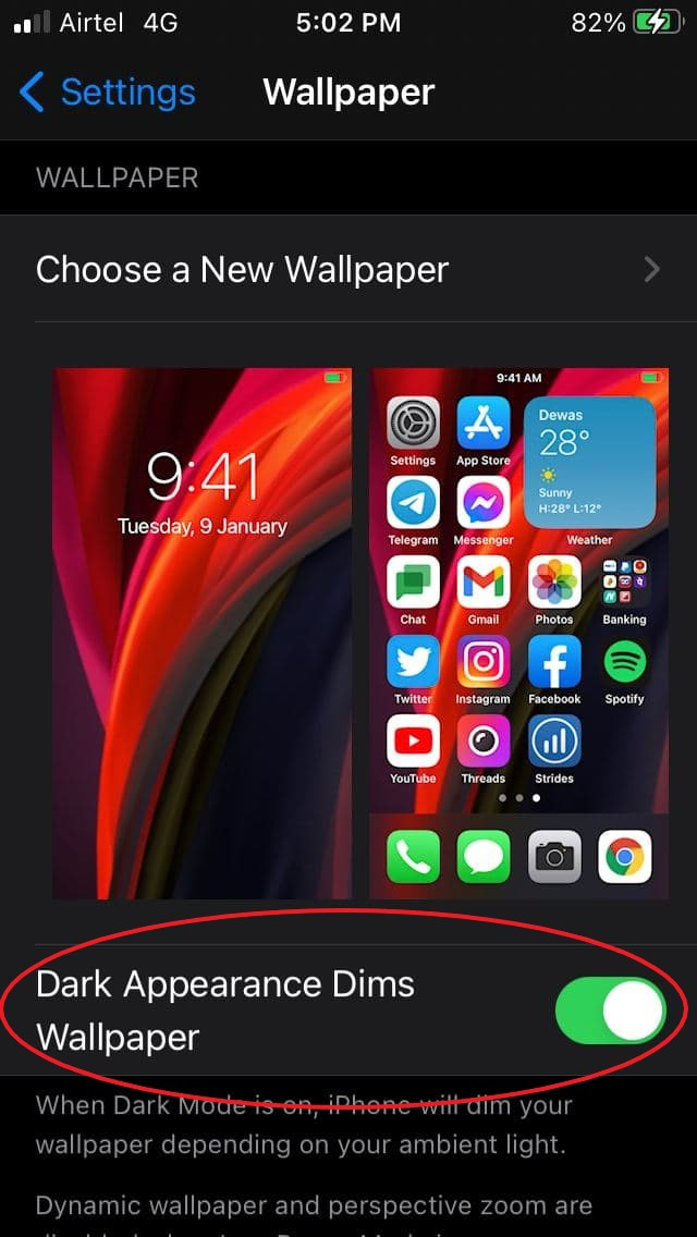 Disable Dimmed Wallpaper on iPhone (iOS 13 and iOS 14)
