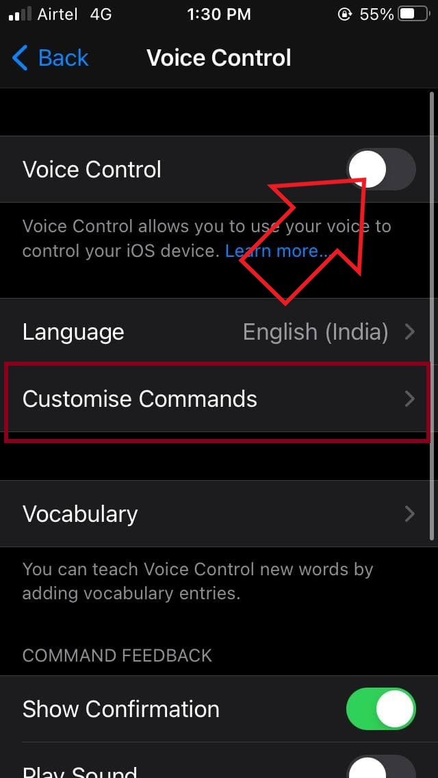 Trick to Control Your iPhone Using Voice if Touch Screen is Not Working