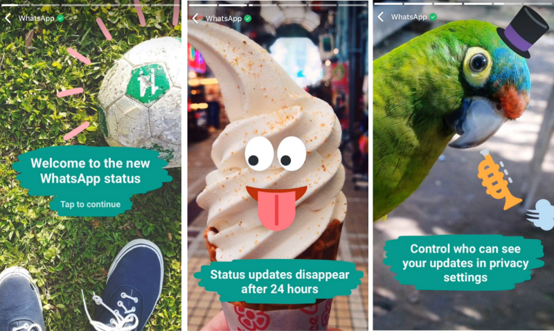 Top 5 WhatsApp Features Missing in Signal Messenger