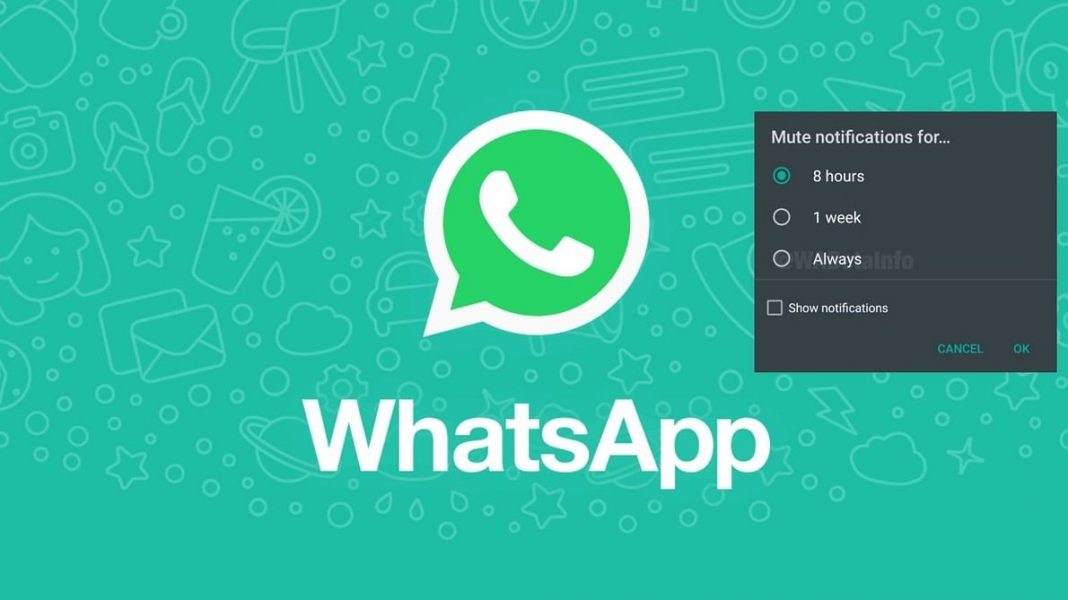 How to Mute Chats and Groups on WhatsApp – Gadgets To Use