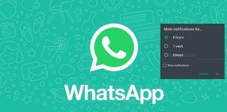 How to Mute Chats and Groups on WhatsApp