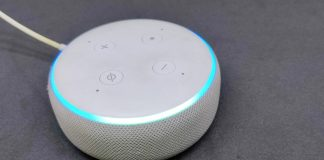stop Others From Using Your Alexa Echo Device